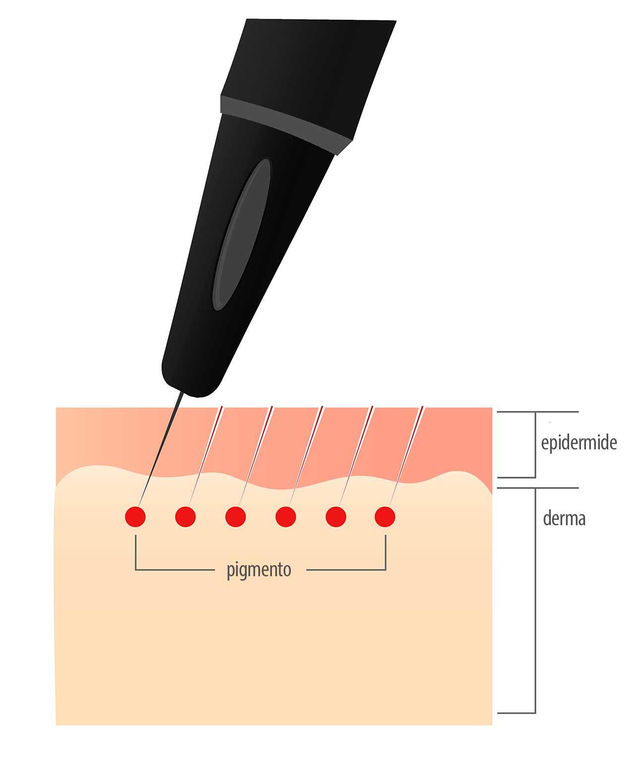 scheda inserimento pigmenti